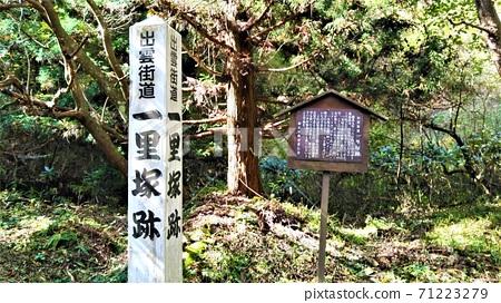 岡山縣新莊村的出雲海道市立塚遺址,在市級中排名最低 71223279
