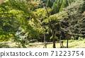 오카야마 현 신조 촌, 後鳥羽上皇 축 늘어져 밤 71223754