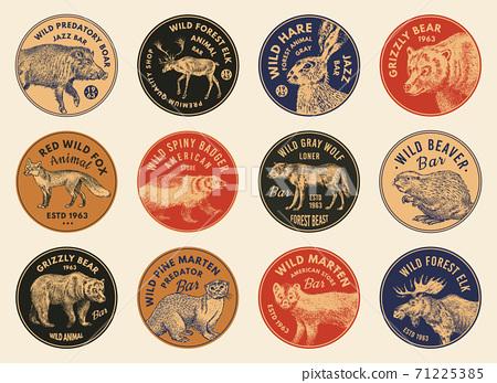 Wild animals stickers in vintage style. Forest Deer Beaver Elk Wolf Bear Fox Marten Badger Boar Hare 71225385