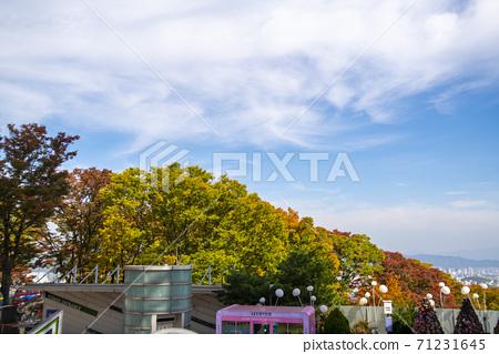 남산,중구,서울 71231645