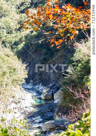 漫步溪谷 71233946