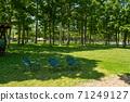 椅子放在樹蔭下 71249127