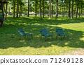 椅子放在樹蔭下 71249128