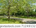 公園景觀 71249132