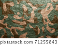 Abstract modern military background for army pattern design and backdrop.3D Camouflage pattern.  71255843
