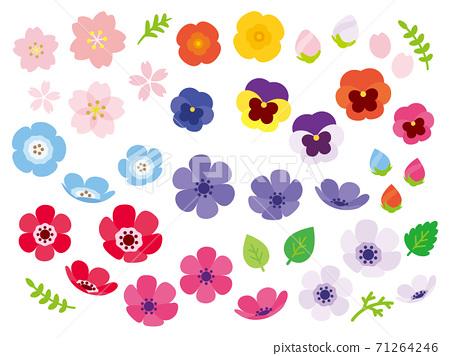 화려한 봄 꽃 세트 71264246