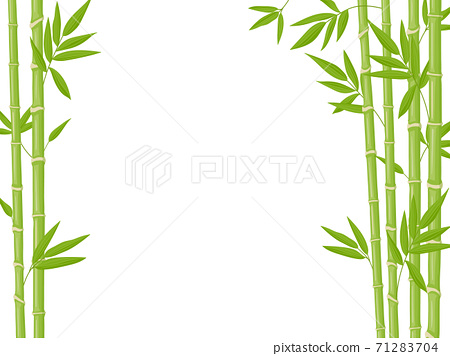 Bamboo background. Asian fresh green bamboo stalks, natural bamboo plant backdrop, stick plants with foliage vector illustration 71283704