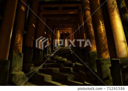 京都伏見稻荷大社神社Torii Torii 71291586