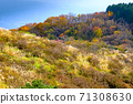 Autumn leaves near the summit of Mt. Yamato Katsuragi 71308630