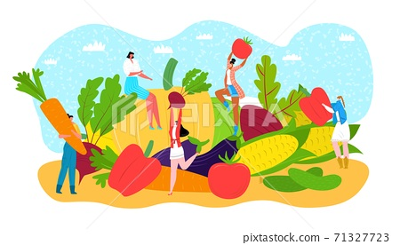 Vegetable diet food concept, vector illustration. People character in healthy lifestyle, fresh vegetarian nutrition. Organic cartoon fruit 71327723