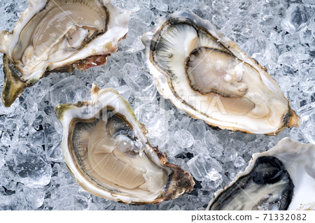 Fresh opened oyster sirved as top view on crushed ice 71332082