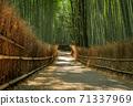 Arashiyama Bamboo Grove walking path in Kyoto, Japan 71337969