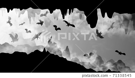 Mysterious underground cave whith flying bats black and white simple silhouette vector illustration 71338545