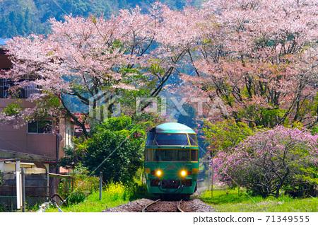 벚꽃과 유후인의 숲 71349555