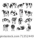 2021年的新年賀卡插圖荷斯坦奶牛與2021年的字母 71352449