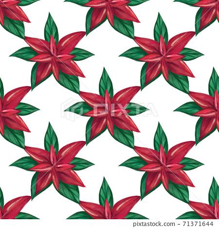 .poinsettia seamless pattern. Christmas watercolor pattern 71371644