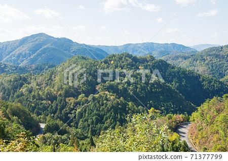 高雄嵐山公園大道的景色 71377799