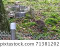 동물 타이베이시 동물원 타이베이 무자 동물원 귀여운 동물 71381202