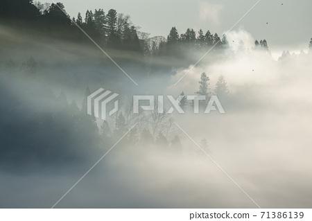 Morning mist of Satoyama 71386139