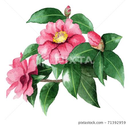 水彩粉紅色Southernka 71392959