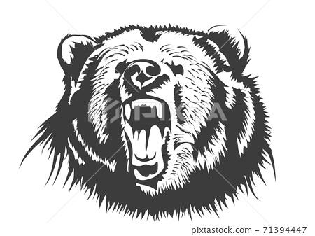 bear animal  silhouette 71394447