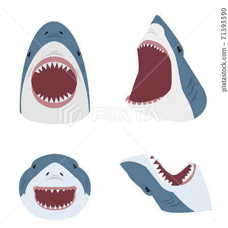 Big shark with open mouth set 71395590