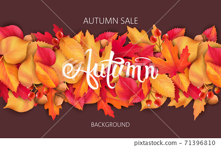 Abstract background with leaves, acorns and berries. Autumnal sale 71396810