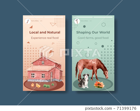 Instagram template with farm organic concept design for online marketing and social media  watercolor  vector illustration. 71399176