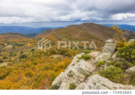 Autumn picture from Spanish mountain Montseny, near Santa fe del Montseny, Catalonia 71401603