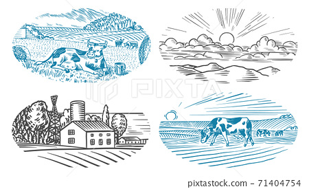 Rural meadow. A village landscape with cows, hills and a farm. Sunny scenic country view. Hand drawn 71404754