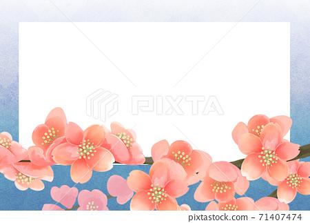 매화의 꽃 사진 프레임, 엽서 사이즈, 연하장 용 71407474