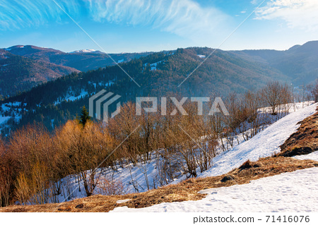 mountainous countryside on a sunny day. late winter scenery or beginning of spring. melting snow and leafless trees on the hills. village in the distant valley. transcarpathia, ukraine 71416076