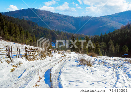carpathian countryside on a sunny winter day. beautiful mountainous rural landscape. fence along the road through snow covered meadow among spruce forest on the hill 71416091