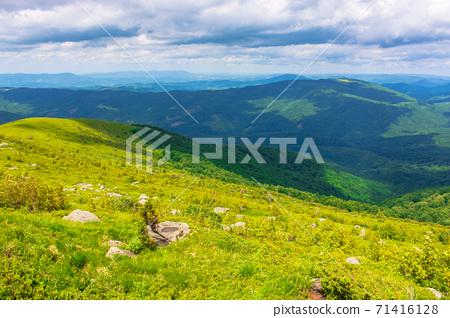 great alpine scenery in summertime 71416128