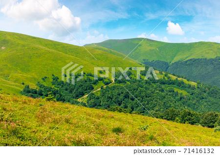 alpine scenery of carpathian mountain ridge borzhava. stunning views on a windy summer day. clouds on the sky. popular travel destination of ukraine 71416132