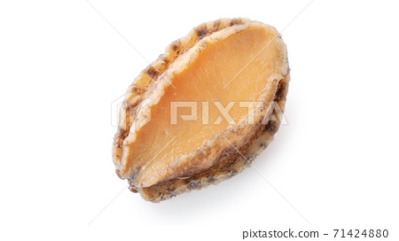 鮑魚 海鮮 食物 白底 去背 abalone isolated アワビ あわび 鮑 切り抜き 71424880