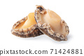 Abalone seafood food white background abalone isolated アワビ あわび abalone 切り抜き 71424881
