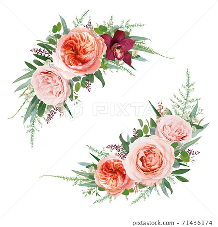 Elegant vector floral bouquet set. Pale coral Juliette rose, dusty pink flowers, white astrantia, burgundy red orchid, Eucalyptus greenery branches, seeds, leaves, tender fern vine vector illustration 71436174