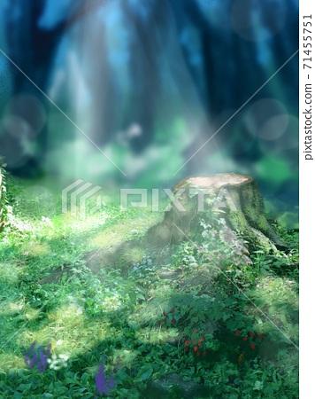 夏季有西式花園,樹樁和陽光的美麗山水畫 71455751