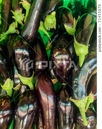 lots of ripe aubergine vegetables for cooking as a background 71455979