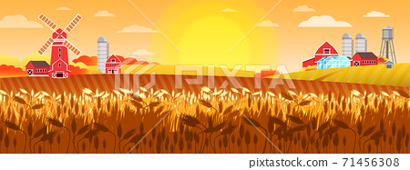 Wheat field vector landscape with mill, village houses, sun, barn greenhouse, water tower.  71456308