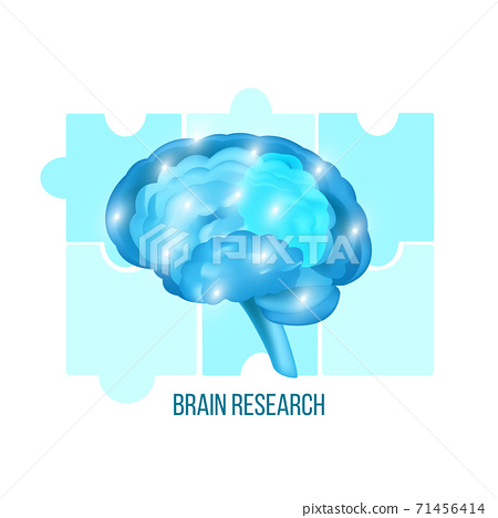 Brain research medical illustration with neurons isolated on white.  71456414