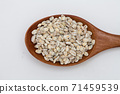 Wooden spoon with unhulled barley on white 71459539