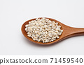 Wooden spoon with unhulled barley on white 71459540