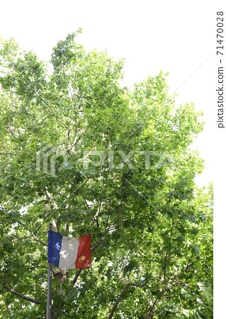 一面旗幟 71470028