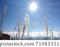 秋月,Yusudake山路上的Susuki,Unkai和Sun 71483331