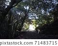在久留米美濃山脈的滑翔機山步道上的木隧道 71483715