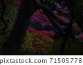 가을의 풍경 71505778