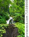 綠化的中坂清水 71508668