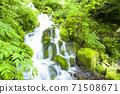 綠化的中坂清水 71508671